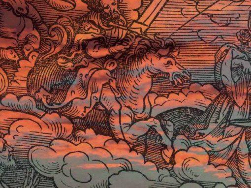 Scénographie «Le crépuscule des oiseaux – Vestiges d'un royaume»